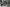 Harley Davidson 017 – Venerdì | FiftyFive Garage | 12