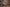 Harley Davidson 017 – Venerdì | FiftyFive Garage | 1